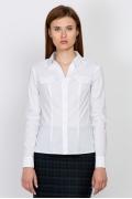 Классическая офисная рубашка Emka Fashion b 2104/vonda