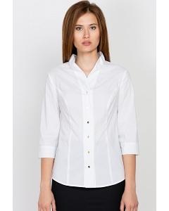 Офисная блузка Emka Fashion b 2182/vonda