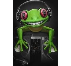 Клубная женская футболка Crazy Frog