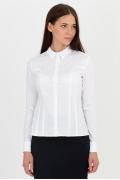 Классическая женская рубашка Emka Fashion b 2102/vonda