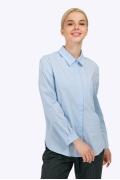 Классическая рубашка в мужском стиле Emka B2266/nubus