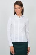Женская рубашка Emka Fashion b 2102/dulma