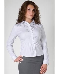 Женская блузка Golub Б834-724
