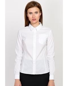 Женская белая рубашка Emka Fashion b 2119/vonda