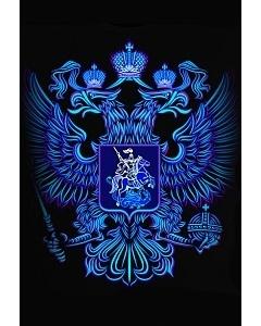Мужская клубная футболка Герб России