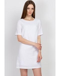 Платье Emka Fashion PL-511/shine